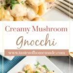 Creamy gnocchi on a plate
