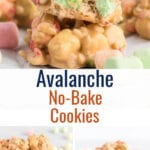 Collage of avalanche cookie photos with text overlay.
