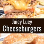 Collage of cheeseburger photos with text overlay.
