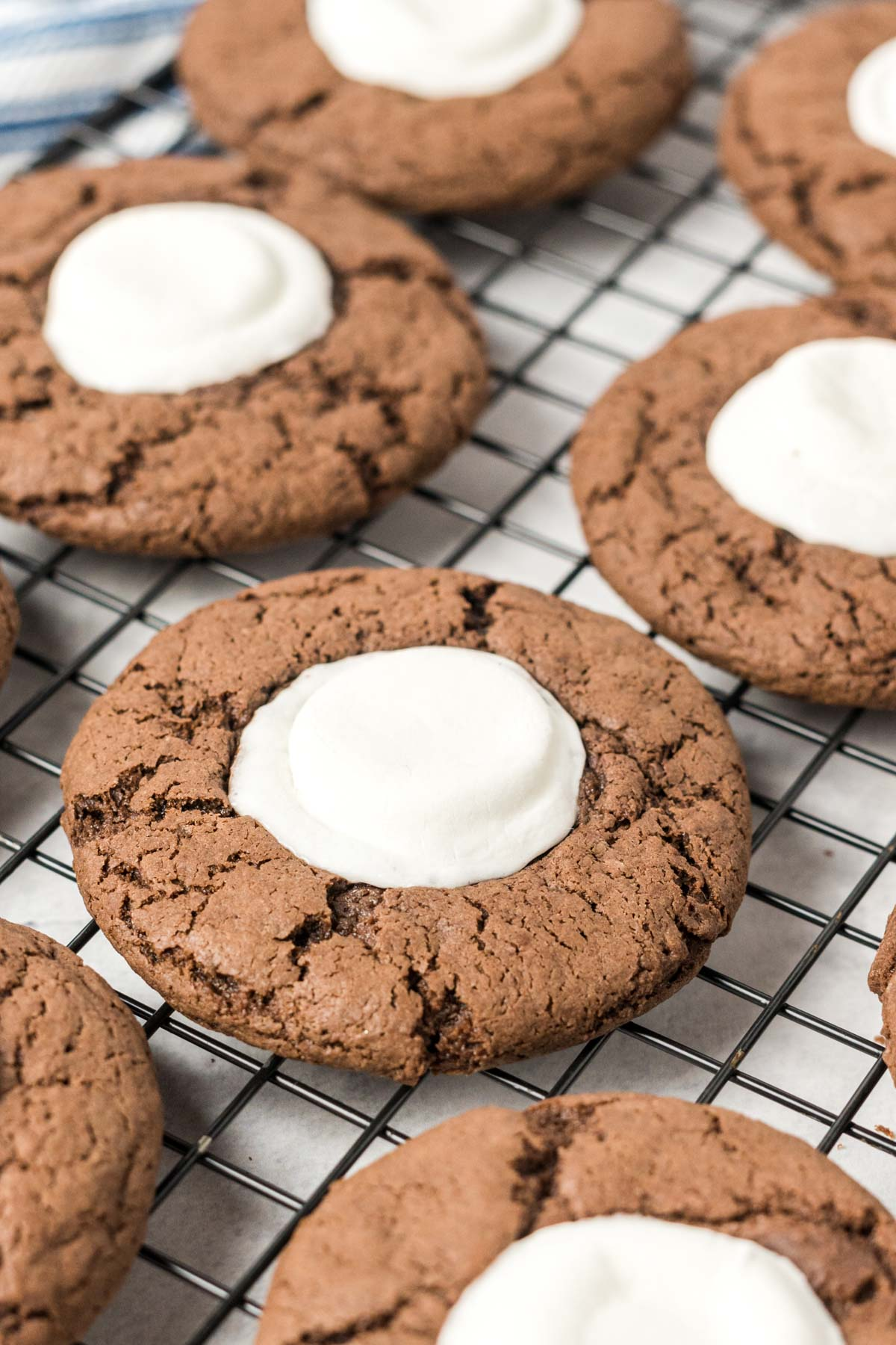 Chocolate cookies with melted marshmallow on top.