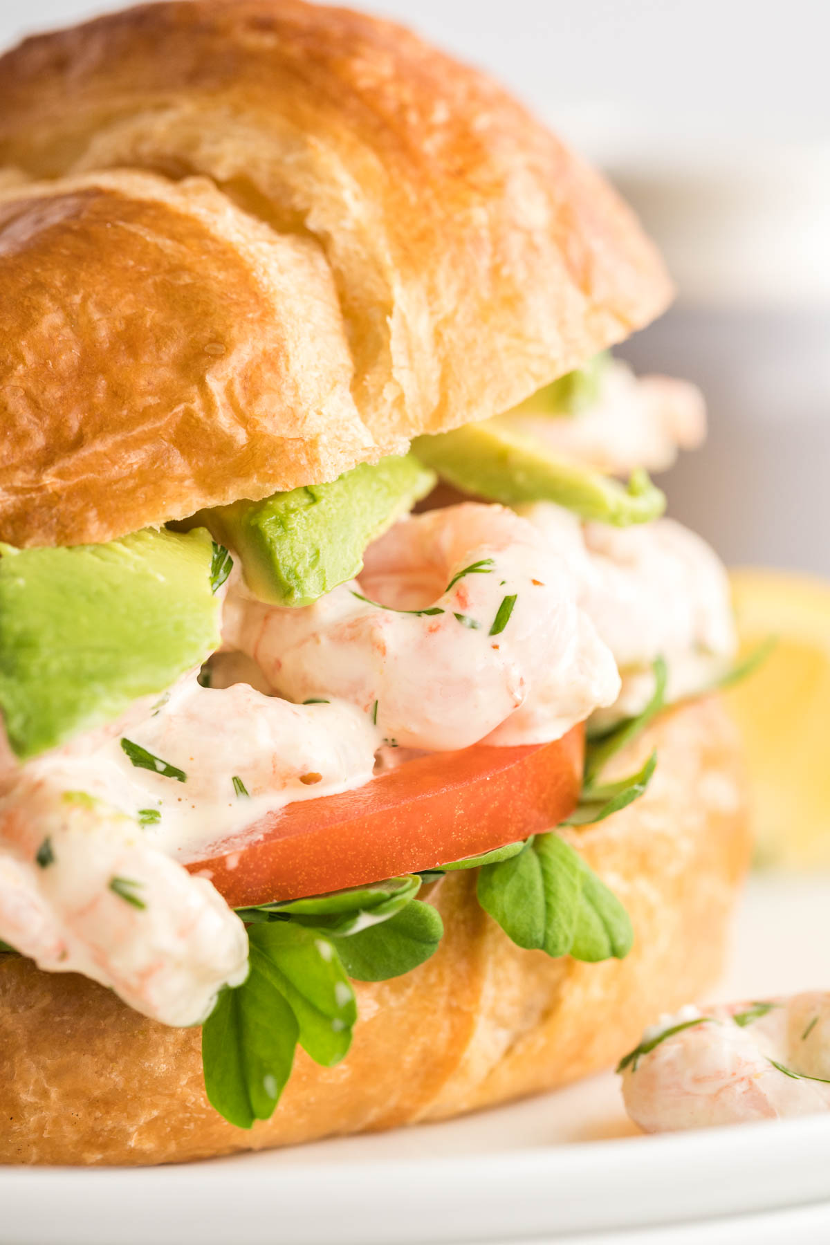 Shrimp salad made with mayo and dill in a croissant with pea shoots, tomato and avocado.